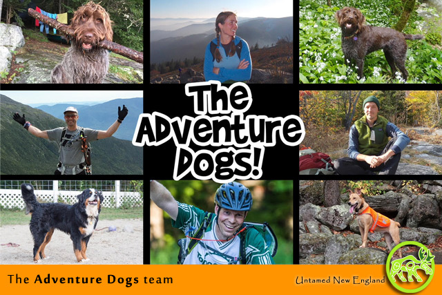 The Adventure Dogs